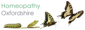 Homeopathy Oxfordshire - Heather Abel
